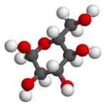 le glucose