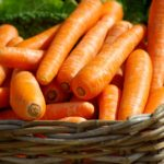 carottes oranges