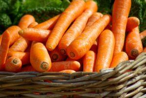 carottes pour le bronzage
