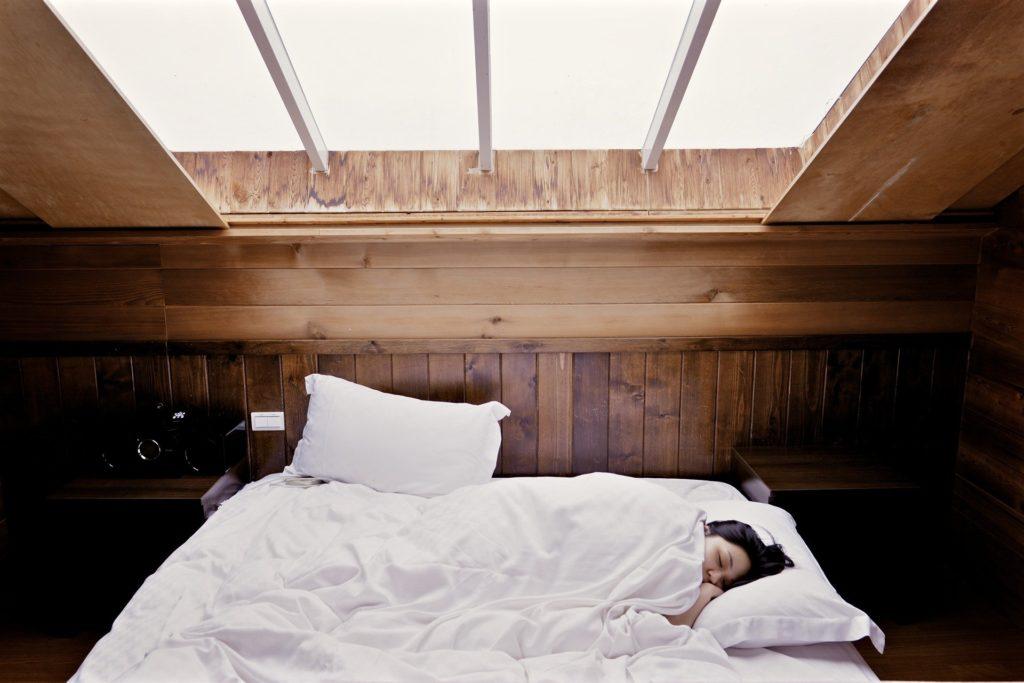 dormir pendant l'hiver
